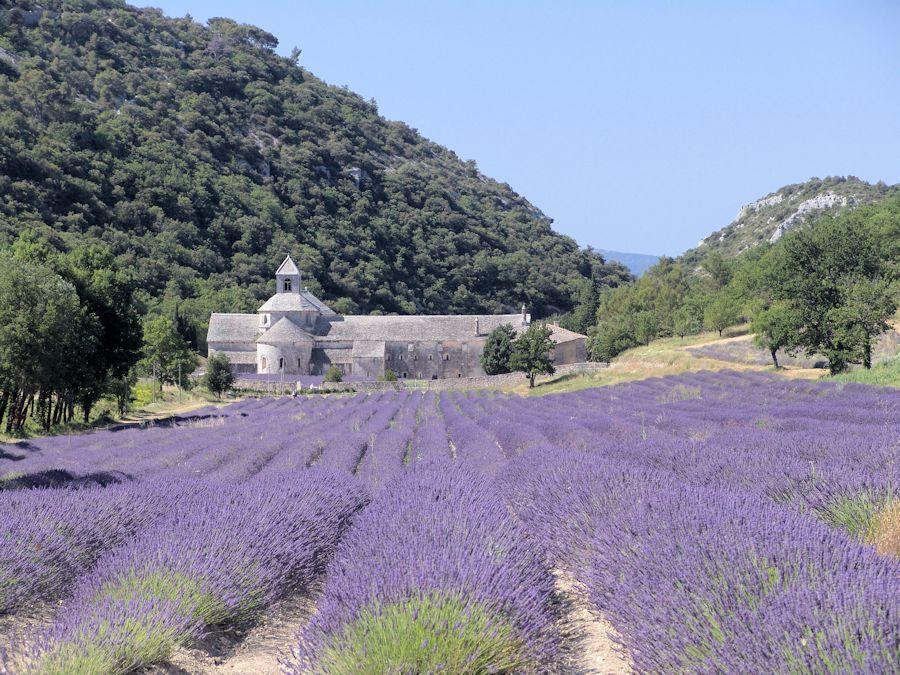 Abbeye de Senanque, F