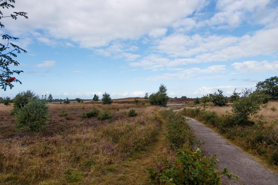 Haarle, Nijverdalsebergweg