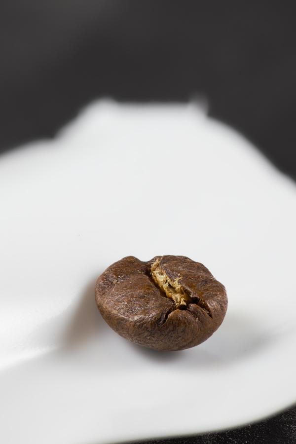 koffieboon